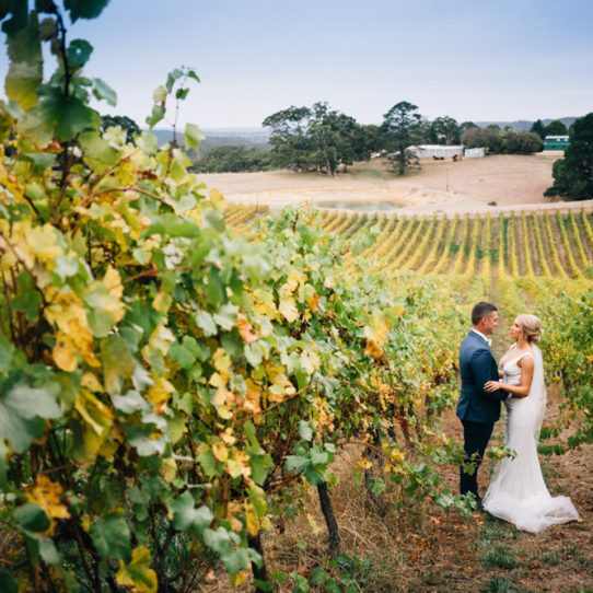 Kyle & Katrina at Anderson Hill Vineyard