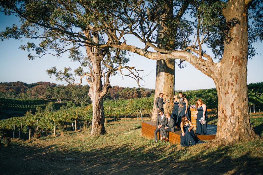 bridal party at golding winery