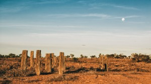 tolarno station landscape outback new south wales